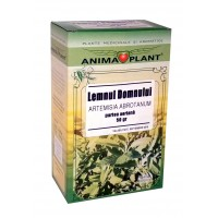Southernwood, Lad's love, or Southern Wormwood, Artemisia abrotanum, aerial part, small plant, for tea, 50g