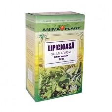 Cleavers,, Galium aparine, aerial part, small plant, for tea, 50g