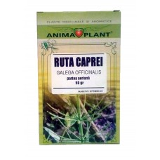 Goat's-rue, Galega officinalis L., aerial part, small plant, for tea, 50g
