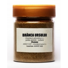 Hogweed, Heracleum sphondylium, powder, 20 g